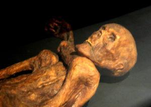 Iceman Mummy, Otzi Quinson